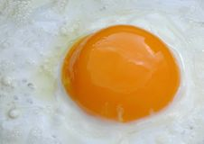Free Egg Close Up Frying In Pan Stock Photography - 3960512