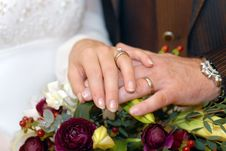 Free The Hands Of Newlyweds Stock Photos - 3961763