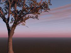 Tree On Horizon Royalty Free Stock Photo