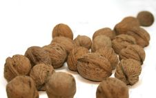 Free Walnuts Stock Photos - 3965083