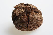 Free Nut For Sweet Dessert Taste! Royalty Free Stock Image - 3965596