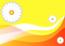 Free Summer Background Stock Photography - 3965772