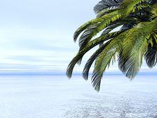 Free Beautiful Landscape Royalty Free Stock Image - 3965896