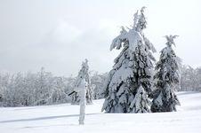 Free White Winter Landscape Royalty Free Stock Photos - 3967318
