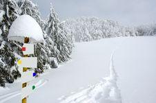 Free White Winter Landscape Stock Photos - 3967363