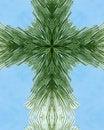 Free Icy Pine Needle Cross Stock Image - 3977721