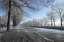 Free Winter Wonderland Stock Photography - 3970302