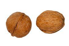 Free Walnuts On White Royalty Free Stock Photos - 3971228