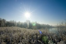 Free Winter Sun Landscape Royalty Free Stock Photos - 3971848