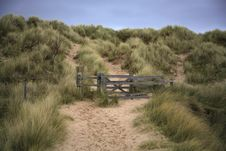 Free Beach Path Royalty Free Stock Photos - 3971958