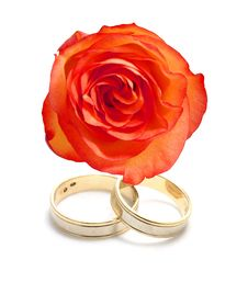 Free Wedding Rings And A Rose Royalty Free Stock Image - 3974166