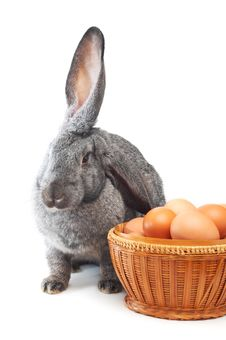 Free When There Will Be Easter Royalty Free Stock Photography - 3974307