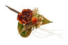 Free Christmas Flower Stock Photo - 3974720