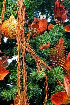 Free Christmas Tree 1 Royalty Free Stock Photography - 3974777