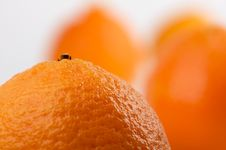 Free Clementine Oranges Royalty Free Stock Photo - 3975575