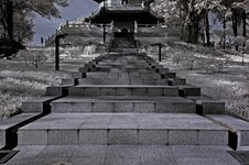 Infrared Photo – Tree, Stair Case And Walk Path Royalty Free Stock Photography