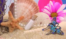 Free Still Life On Beach Royalty Free Stock Image - 3976566