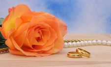 Free Rose And Wedding Rings Stock Photos - 3976693
