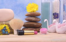Free Cosmetics And Spa Products Royalty Free Stock Image - 3976706