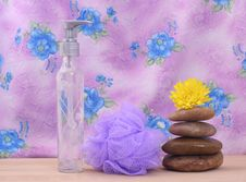Free Spa Products Stock Photography - 3976722