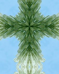 Free Icy Pine Needle Cross Stock Image - 3977721