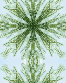 Free Icy Pine Needle Cross 5 Stock Photo - 3977770