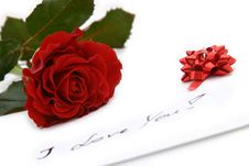 Free Beautiful Red Rose Royalty Free Stock Photo - 3978865