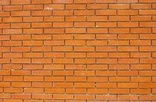 Free Wall Of Bricks Stock Photography - 3979582