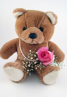 Free Beary In Love Stock Photography - 3980512