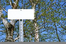 Free Blank Sign In Spring Forest Royalty Free Stock Photo - 3982135