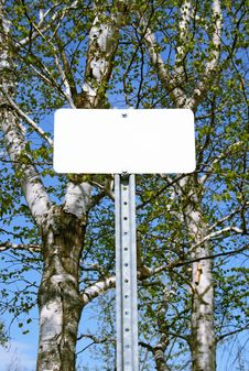 Free Sign With Copy Space In Spring Forest Royalty Free Stock Photography - 3982147