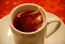 Free Wild Berry Tea Cup Royalty Free Stock Photo - 3982195