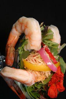 Free Shrimp Cocktail Stock Photos - 3983253
