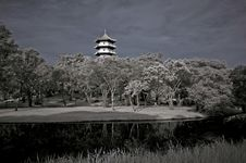Free Infrared Photo – Tree, Pagoda And Lake In The Pa Stock Image - 3984081
