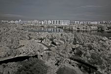 Infrared Photo – Tree, Landscapes And Apartment Stock Photography