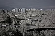 Infrared Photo – Tree, Landscapes And Apartment Stock Images