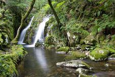 Free Beautiful Waterfall Stock Photo - 3988950