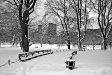 Free Boston Winter Stock Photos - 3993763