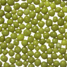 Free Fresh Green Peas Stock Photo - 3996070