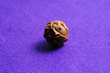 Free Chocolate Still Life Royalty Free Stock Photo - 3998625