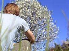 Free Enjoying Tree Stock Photo - 41460