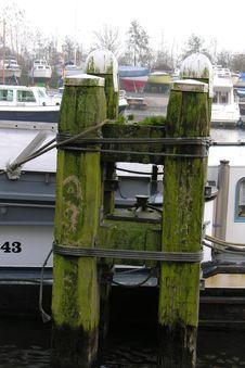 Free Lake Pole Stock Images - 45144