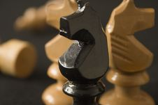 Free Chess Horses Stock Photography - 401372