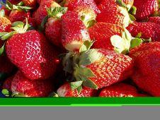Free Strawberries Stock Photo - 403100