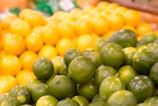 Free Limes Against Lemons Royalty Free Stock Photography - 404697