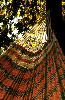 Free Colorful Hammock Royalty Free Stock Photography - 406707