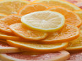 Free Citrus Slices Stock Image - 4002081