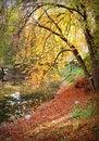 Free Autumn Stock Photos - 4007783