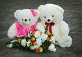 Free Par White Teddy Bear Stock Images - 4007844
