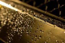 Free Waterdrops Stock Photo - 4003930